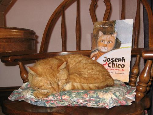 Katt skrev bok om paven og en avsløring om Hjørnet