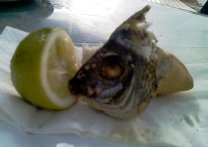 fisken.jpg