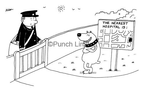 postman_dogchasing