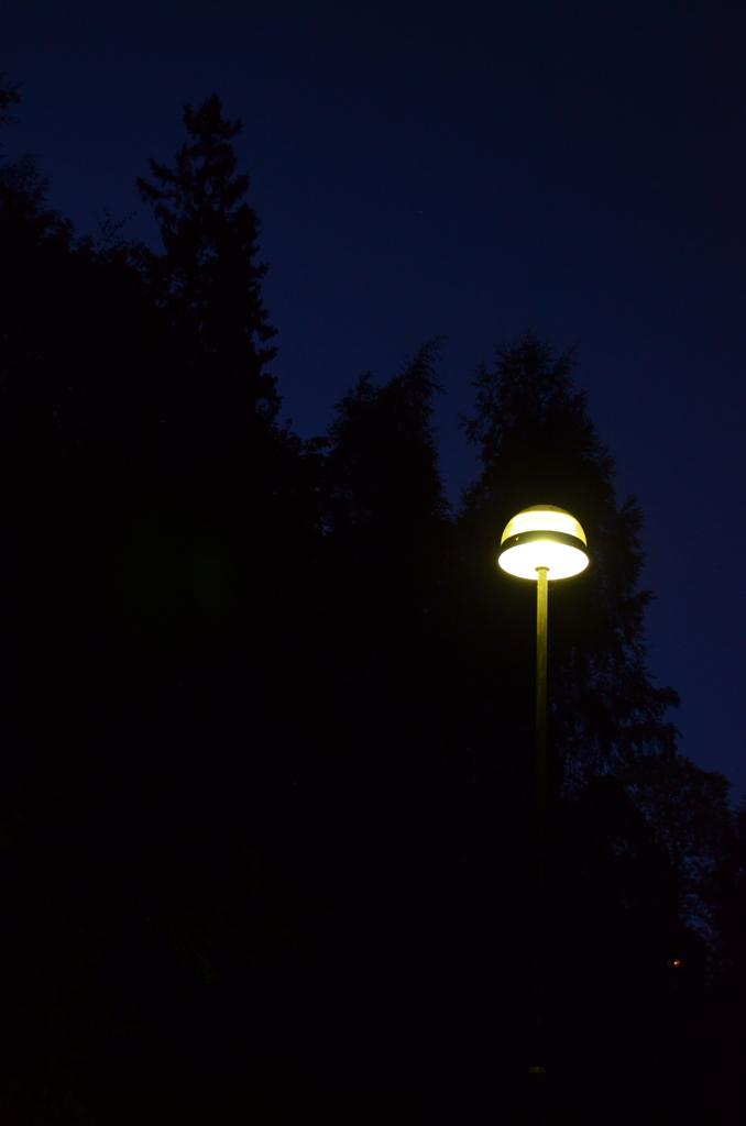 Lys i høstmørke