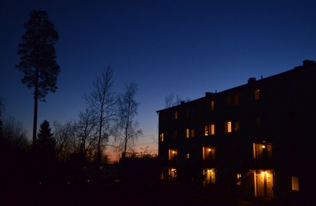 Evening light in November